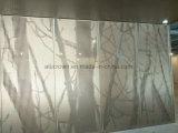 precio de fábrica de pantalla de metal de aluminio de diseño de panel perforado