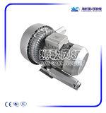ventilador del motor eléctrico 220V para el servicio del transporte del biogás