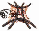 De reuze Schommeling van de Boom van het Spinneweb