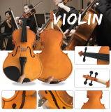 Студенты Хорош-Материала басовые 1/8 скрипок разделяют Tonewood
