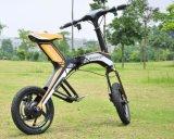 전기 스쿠터 E 자전거를 접히는 2017 새 모델 Robstep X1