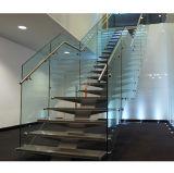 Escaleras de acero interiores del diseño de la escalera
