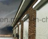 Hurrikan-Blendenverschlüsse, rollen oben Blendenverschluß (SLLP55)