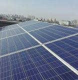 Bon prix Mono/Poly Panneau solaire 325W 320W