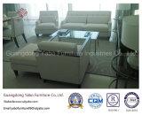 Empfindliches Hotel-Schlafzimmer-Möbel-Set gebildet vom Holz (YB-G-6-1)