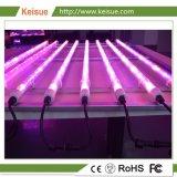 Keisue accesorio cada vez mayor de iluminación con lámparas de crecer 8 PC
