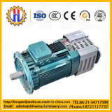 Mini motor del material de construcción 500kg que levanta el alzamiento eléctrico