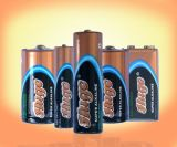 1.5V C alkalische Batterie der Größen-LR14 (LR14)