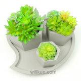 De nieuwe Mini Succulente Planter van de Potten van het Cement van de Grootte