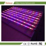 Зажимное приспособление для освещения Keisue растет с 8 ячейками расти лампы