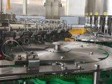 Remplissante mis en bouteille machine Monobloc automatique de l'eau pure et minérale et recouvrante de lavage