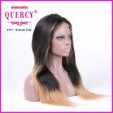 최신 판매 가장 싼 가격 브라질인 100% 사람의 모발 Omber 색깔 정면 레이스 가발