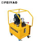 Pompa elettrica idraulica sostituta del doppio di alta qualità (FY-ER)