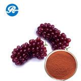 Выдержка семени виноградины внимательности &Skin красотки
