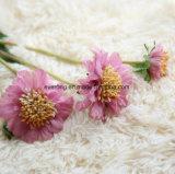 Huwelijk Daisy Ierland van de Stammen van de Chrysant van Daisy het UK Ebay van het Boeket van het Huwelijk van de Bloemen van Australië van de Chrysant van de zijde het Kunstmatige