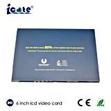 256MB~8GB 선택적인 6 인치 스크린은 LCD 비디오 카드를 승진시킨다