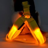 Segurança de produtos animais de estimação reflexivo, levaram os animais de estimação cordinhas, Correia de Estimação de LED com marcação EN13356