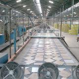 La pared de cerámica embaldosa el mercado decorativo de la alta calidad 200X300m m África