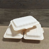 Conteneur de nourriture à bord jetable écologique de fécule de maïs des boîtes de déjeuner