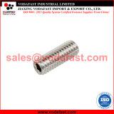 ISO 4026 DIN 913の平らなポイント止めねじのステンレス鋼