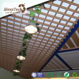 Späteste Entwurfs-Gaststätte-dekorative Innendekoration-Materialien Belüftung-Decke