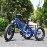 リチウム電池が付いている脂肪質のタイヤの電気三輪車
