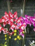 Flores artificiais da camélia Rosa Gu-Jy9heads-Cammelia