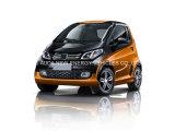 De goede Elektrische MiniAuto van de Voorwaarde met 2 Zetels 2 Deuren