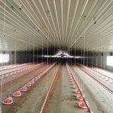Granja avícola moderna casa con estructura de acero de la luz de bastidor en venta