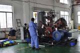 W pulsa el compresor de aire del moldeo por insuflación de aire comprimido
