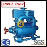 化学ペーパー作成工業のための液体水リングの真空ポンプ及び圧縮機