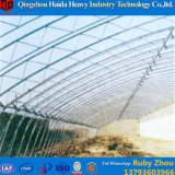Serra della tettoia della pellicola più poco costosa di prezzi della fabbrica della Cina per il cetriolo