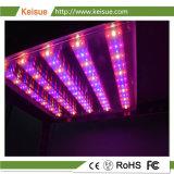 Keisue crecer LED impermeable ligero con grado IP 65