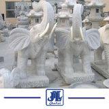Naturel statue de pierre de granit gris Animal de l'éléphant pour le jardin
