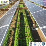 Energia verde realizzata tecnologia della serra dei comitati solari di 275W PV