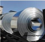 Les bandes en acier au carbone laminés à froid Grade SPCC, SPCD, Spcen Spce, pour utilisation avec des matériaux de certificat de dessin