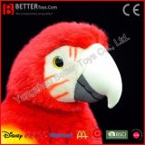 En71 고품질 현실적 채워진 새 연약한 Macaw 견면 벨벳 앵무새 장난감