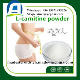 Perdita di peso Oxyephedrine/cloridrato di Methylsynephrine con il pacchetto discreto 365-26-4