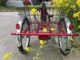 後部バスケットの貨物電気Trikeに乗る3つの車輪の年長者