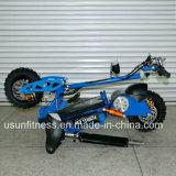 01の強力な緑の電気スクーター- 60V 2000wattのブラシレスモーター