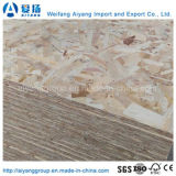 High quality OSB (oriented beach board) for Construction