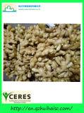 Китайский желтый имбирь оптовой нового урожая свежего имбиря