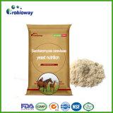 Concevoir l'additif alimentaire en fonction du client d'animal de levure de saccharomyces cerevisiae de cheval