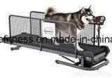 Высокий третбан собаки/любимчика Quanlity подводный для продуктов /Pet здоровья любимчика (UDT-8029-1)/поставкы любимчика/ворота собаки/собаки
