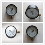 지속된 디자인 방열 압력 계기