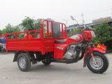 Motociclo Assembly Line di Three Wheels