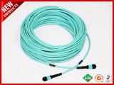 3,0 mm, 24X Líneas de inserción baja hembra MTP OS2 de fibra óptica monomodo Trunk Cable amarillo