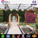 Стальные конструкции зеленый дом для фруктов