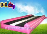 Rosa und schwarze Farbe Aufblasbare Luftschiene
