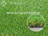 25mm Recreatie/het Synthetische Gras van het Landschap (sunq-HY00180)